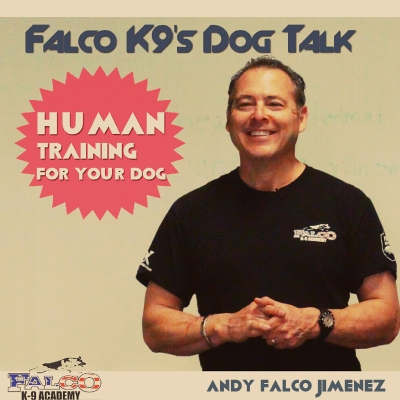 Falco K9's Dog Talk